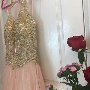 Blondie Nites Dresses - Blondie Nites™️ Peach and Gold Gown